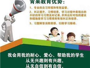 青果教育開設精品晚作業輔導,學科專業輔導,中小學全科