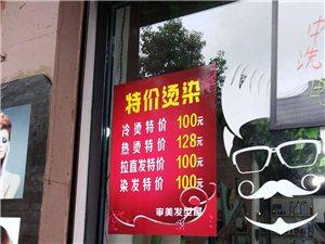 shenmei发型屋特价优惠染发100冷烫100热烫120拉直发100
