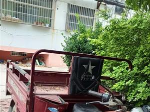 低价转让――力之星三轮摩托车,一直是家里老人开着,机器嫩着呢。车头灯撞掉了,其他一切正常,一打就着火...