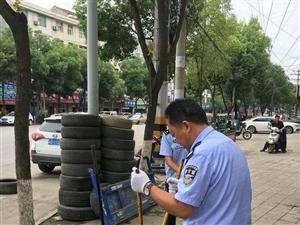 汉滨公安分局城管公安大队捕捉流浪犬