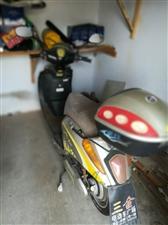 2011年新日踏板电动车,有了汽车基本就闲置了,有需要的请联系