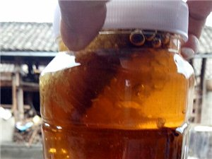 腾冲本地野生蜂蜜