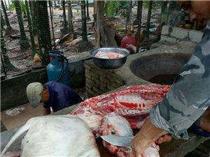 五脚猪肉粽子上市了!