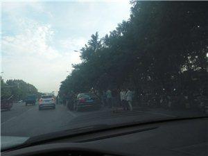 海岱南路与丰收路路口天天早上拥堵不堪