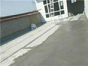 平川陽光防水