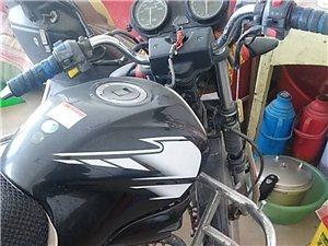 雅马哈骑士摩托车