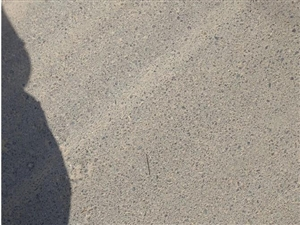 澳门威尼斯人游戏平台213省道福利停车场门口50米不远一个长钉,车辆经过非常容易扎破胎,不知道是人为还是过路车漏的,