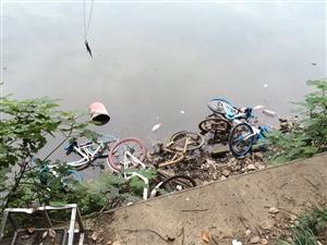 共享单车遭人践踏,毁了鄂州人的形象
