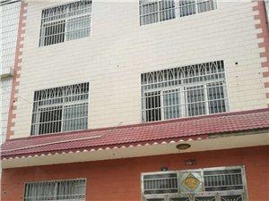 董平街98号整栋商住两用4室3厅3卫1000元/月