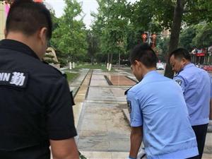 安康市汉滨公安分局城管公安大队捕捉流浪犬