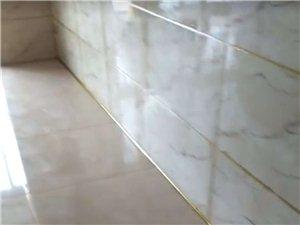 專業地板磚美縫.品質保證