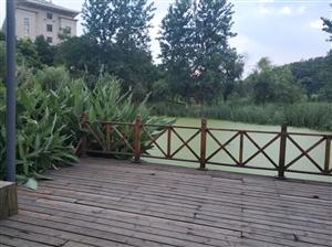 湖口台山公园水塘边护栏很松了