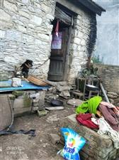 这是双凤镇粑粑铺的一户人家