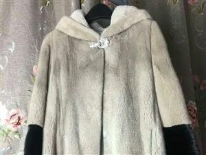 淡季清仓 胸围100,衣长75 进口天鹅绒,毛好的不行,颜色干净,毛款带浪位,大气干净