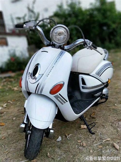 求购踏板摩托一辆