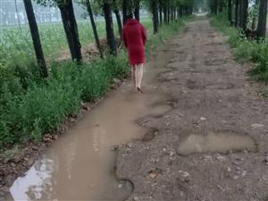 遂平县和兴镇孙庄村牛州的路何时能修?