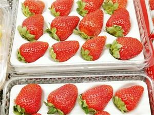 新鲜水果到店,欢迎新老顾客进店选购!