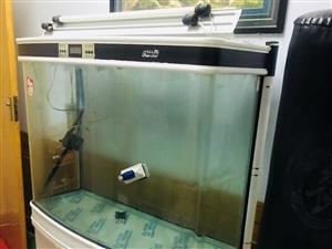 大鱼缸,一米六高,一米三宽,品相挺好,就是没擦。氧气棒乱七八糟的东西都送,二百就卖,可以面谈,在七楼...