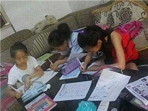 暑期作业辅导及新学期预科班招生
