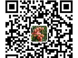 7.8宜�e大塔荔枝�