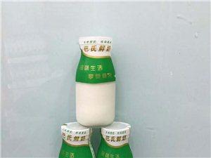 臨泉三禾牛奶養殖場牛奶保證是鮮牛奶
