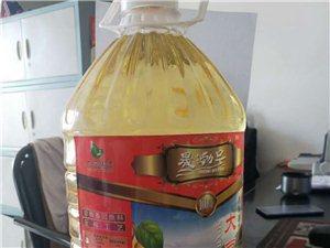 龍鳥非轉基因大豆油,縣城區送貨到家