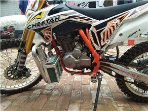 终极猎豹250