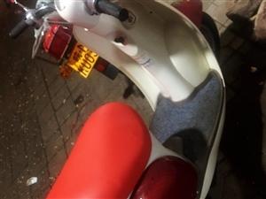 原装进口小龟摩托,自己骑的车况极好,用不着卖了