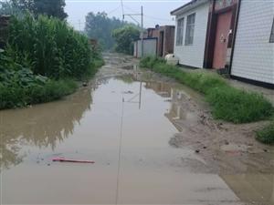雨后的宝坻区于家观陈庄