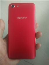 oppo A 1 . 不到一个月的新手机  买着一千五    配置自己看  没得指纹解锁   有人脸...