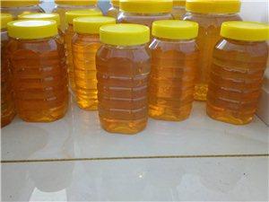真正纯蜂蜜