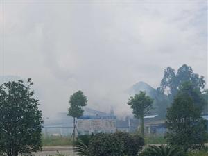 猪帘洞某化工厂污染严重