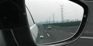 今天下午一匹马跑到了津港高速上散步