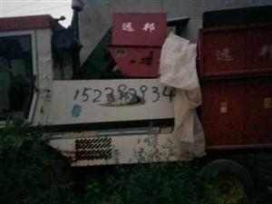 现有玉米收割机转让,价格面议,15款,15239293452,善堂镇东善堂村