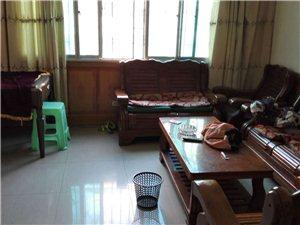 紫江花园对面城东路优质私房出租