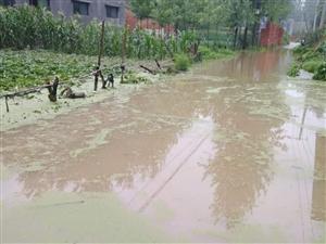 村庄积水谁来管
