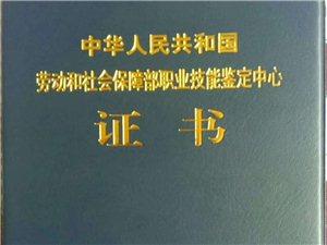 陕西电子信息职业技术学院(国家统招院校来招生了)