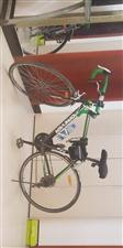 公路赛自行车在家闲置,出手
