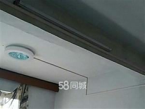 张岭五区机关2室1厅1卫500元/月