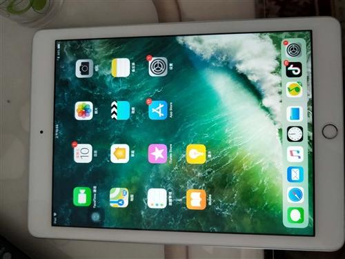 新版ipad今年2月买的,成色99新!基本没用过