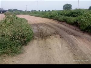 道路施工莫名中止三个月,寸步难行无人问津