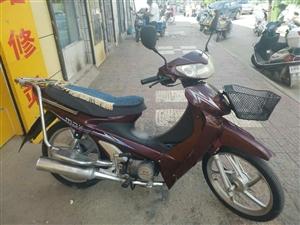 本人现有两台九成新摩托车现低价出售电话15336239548