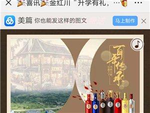 金红川,陇南红川酒业