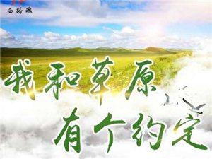 巴里坤大草原三日游