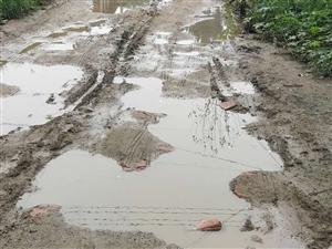 道路积水都是泥
