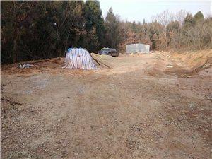 非法养猪场违建快一年未拆除