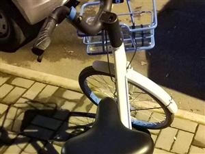 又一个单车二维码被毁坏