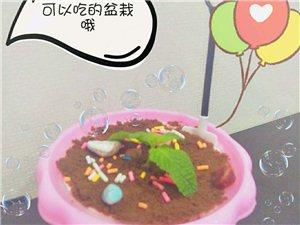 盆栽冰淇淋