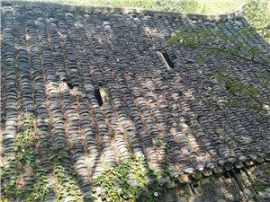 竹海镇小坝田村的旧房改造