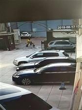 看有认识此人的吗?他偷电瓶车。